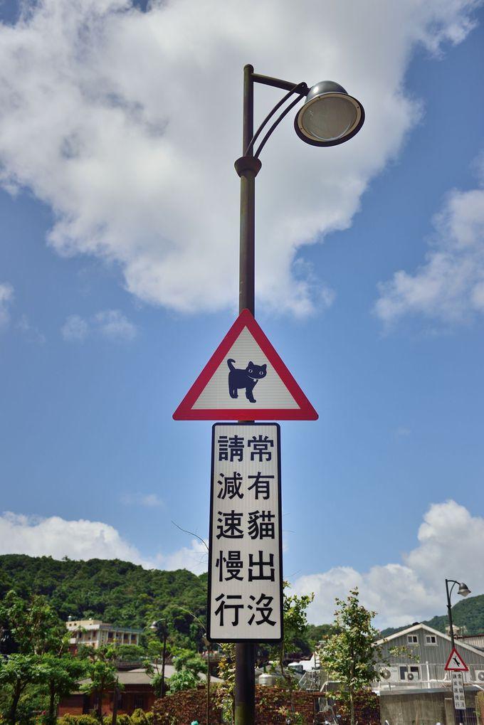 こんな標識見たことありません!