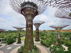 シンガポールのスーパー植物園「ガーデンズ・バイ・ザ・ベイ」エンターテイメント性の高さにびっくり!