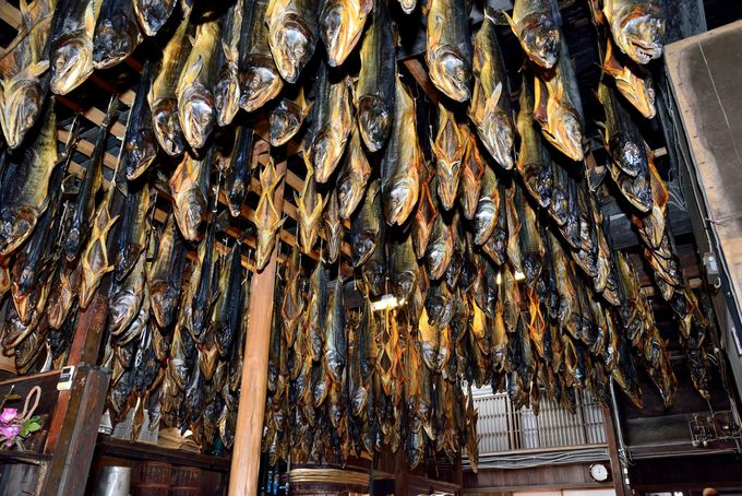 天井から下がる無数の塩引き鮭