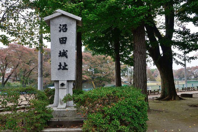 日本の歴史公園100選に選ばれた沼田公園