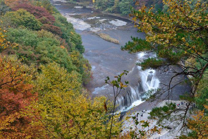 吹割の滝を上から眺める
