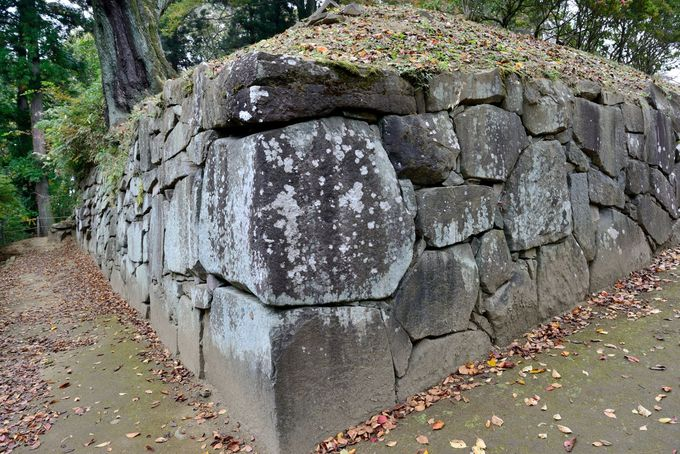沼田城西北端の石垣
