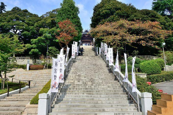 古代より続く由緒ある神社「宇都宮二荒山神社」