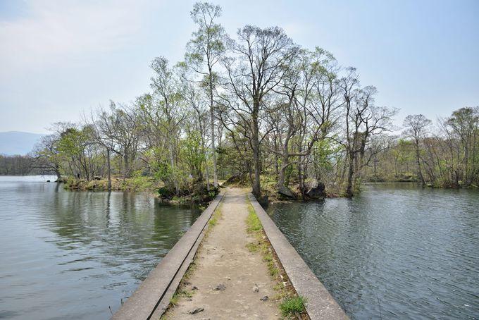 大沼の上を通る路