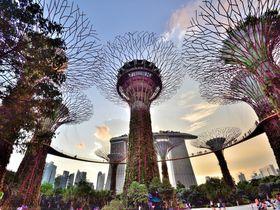 シンガポールは未来的な光景にあふれてる「インスタ映えスポット」10選