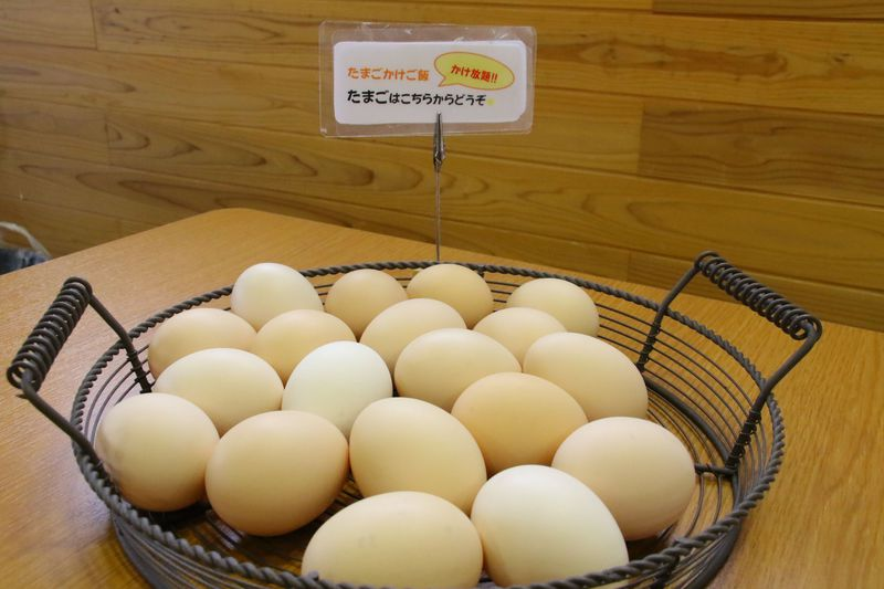 売切れ必至のスイーツ&たまご!鳥取・大山麓「風見鶏」はサクサクシューが人気