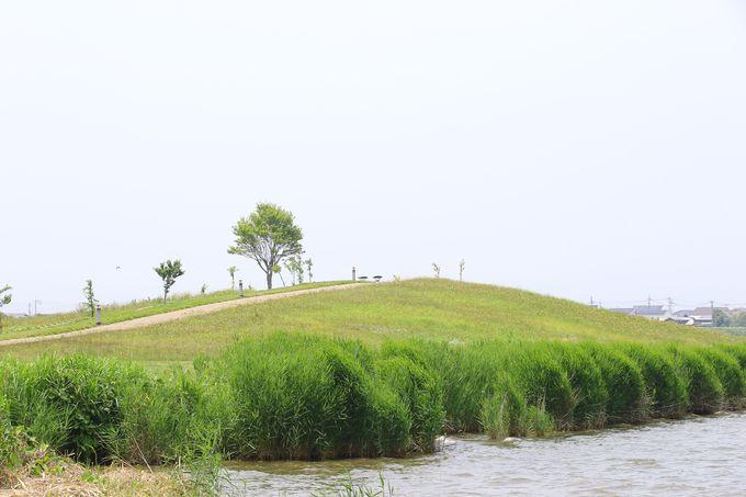 東郷湖でウォーキング
