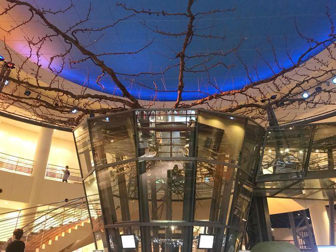 2.鳥取二十世紀梨記念館 なしっこ館