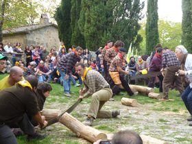 トスカーナの秋祭り!「キノコと栗の祭り」と「木こりのパリオ」