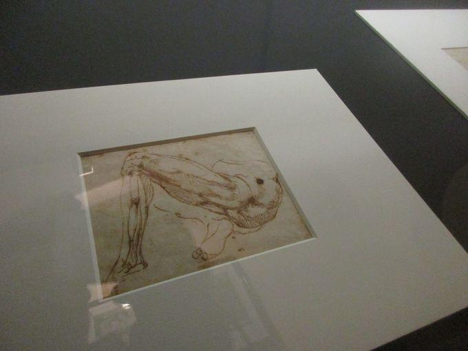 ミケランジェロの製作過程が垣間見える、500年前の粗型と素描コレクション