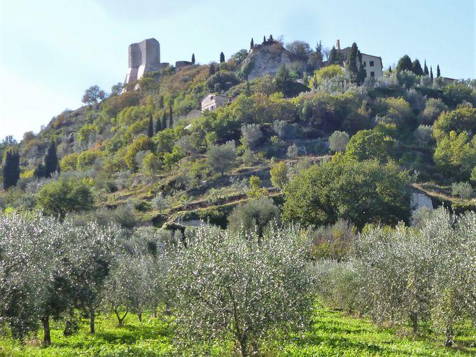 ロッカ・ドルチャ:村のシンボル、テンテンナーノ要塞