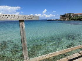 トスカーナ群島「ピアノーザ島」クリスタルブルーの海と廃墟の島