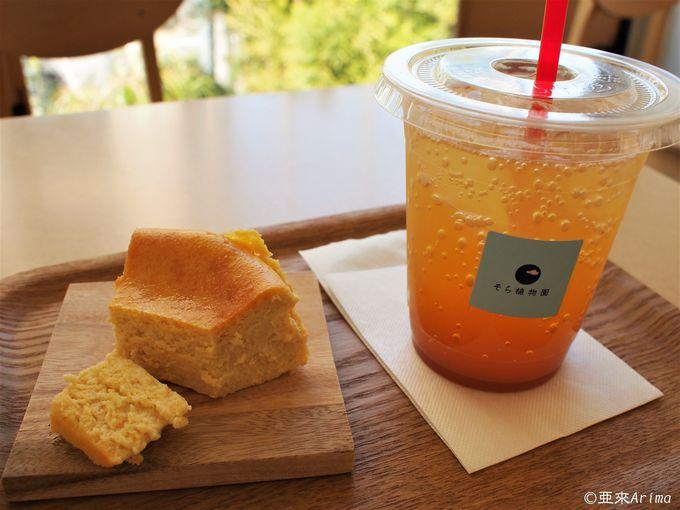 魅力的Cafe&Shop 2選