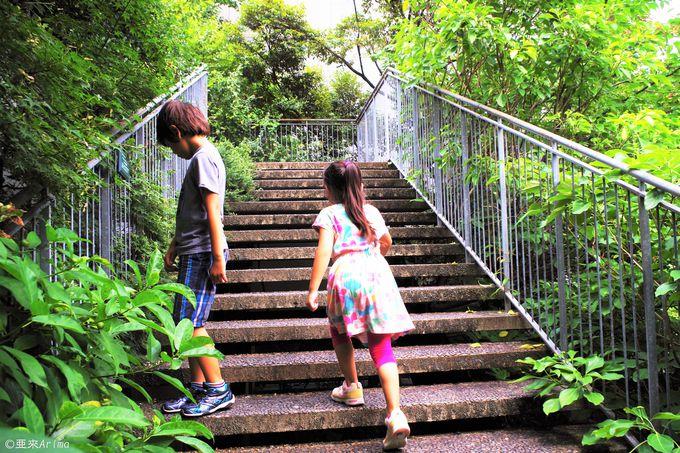 「アクロス山」をLet's Hiking!!