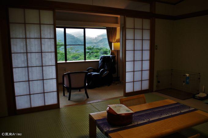 これぞ箱根!遮蔽物ゼロで絶景を味わう客室