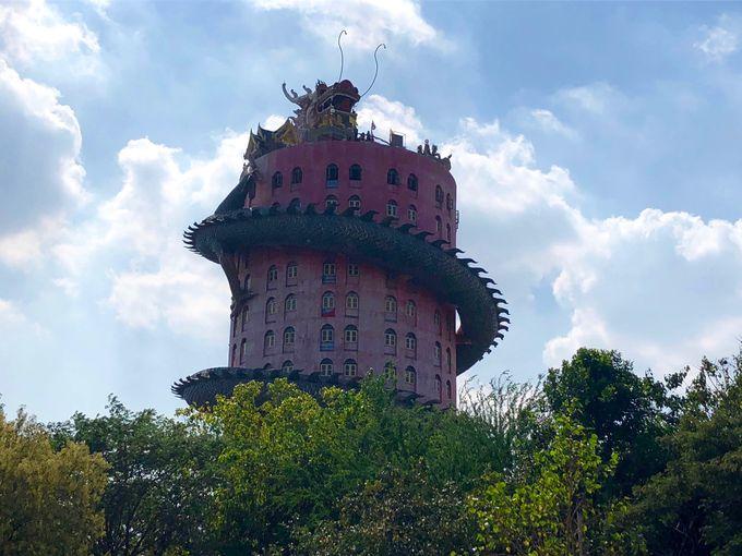 これは現実?なんと龍が塔に巻き付いているではないですか!