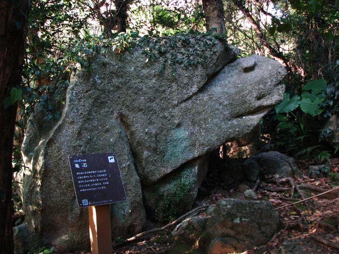 白山洞門は足摺岬から回遊できる