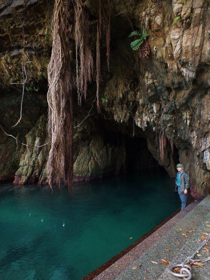 南海地震で隆起した海上の海食洞と陸上の通り抜け洞穴