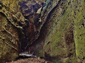 川床を歩く鍾乳洞と喫茶店を擁す海食洞穴 高知「伊尾木洞」と「千鳥洞」