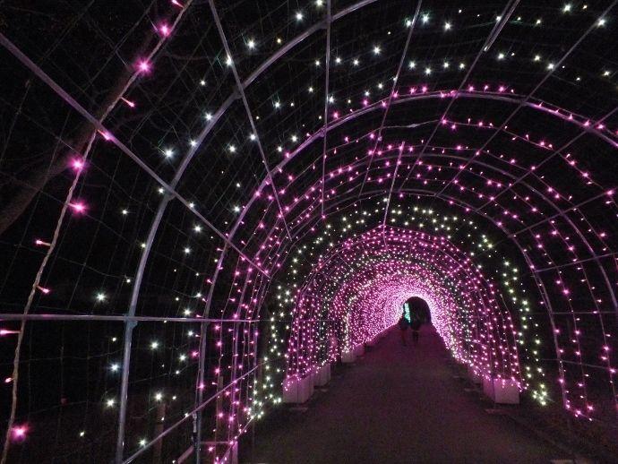 トンネルを抜けるとそこはファンタジーだった