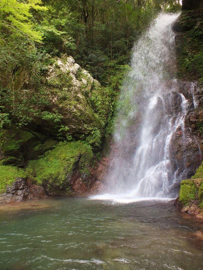 まるで「裏見の滝」の如き平家の滝