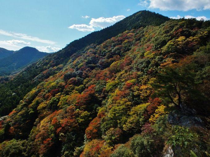 登山者のみが知る紅葉の絶景