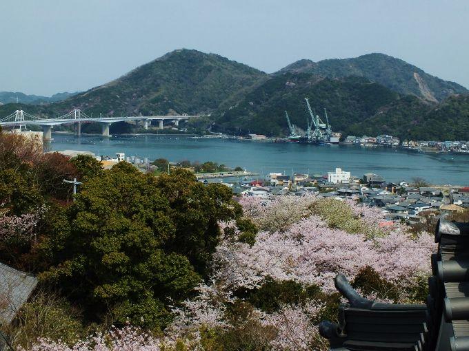 二つの海峡を望む地と枝垂桜