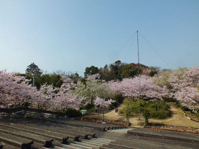 桜の妙見山は「阿波九城」の一つ、撫養城跡