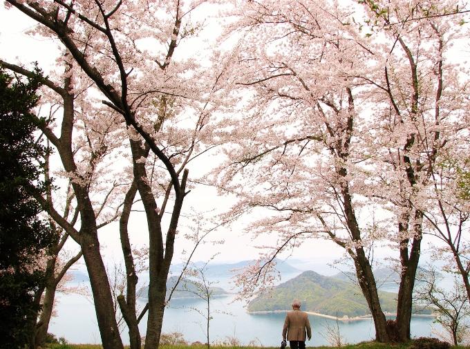 多島美をバックに記念写真を