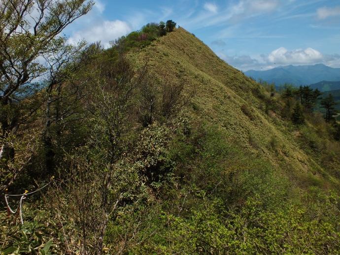 想像以上のパノラマ・猿越山