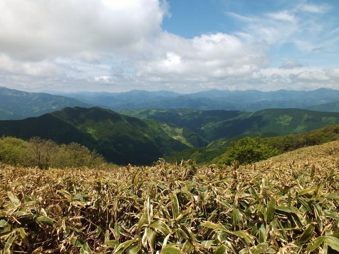 実感せよ!「天空の林道」上名野川線