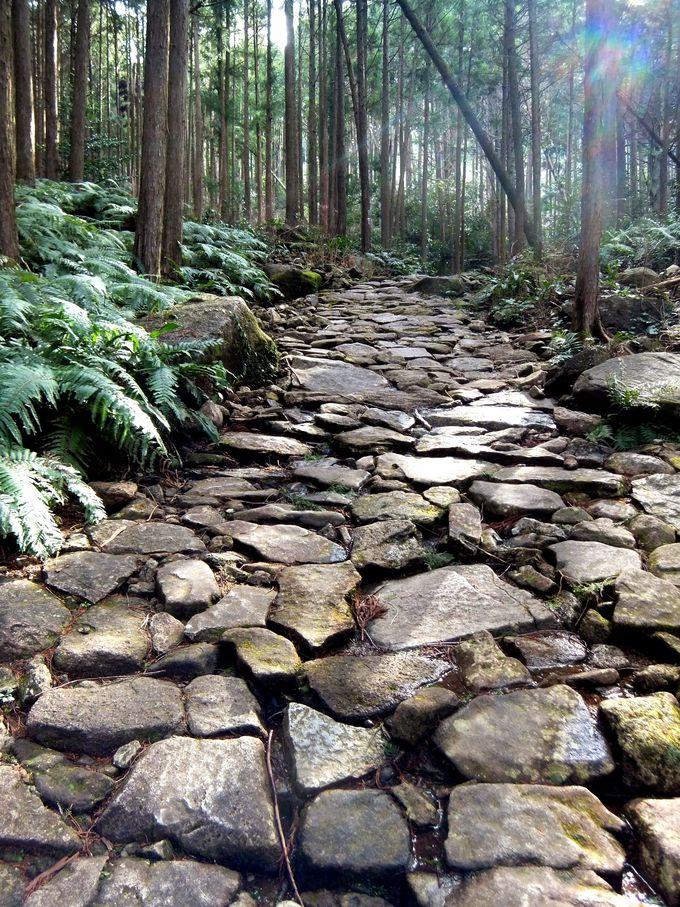 人気ナンバーワンの熊野古道!石畳が美しい馬越峠