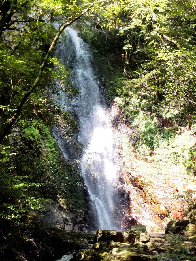 苔むした赤い岩壁と張尾の滝へ
