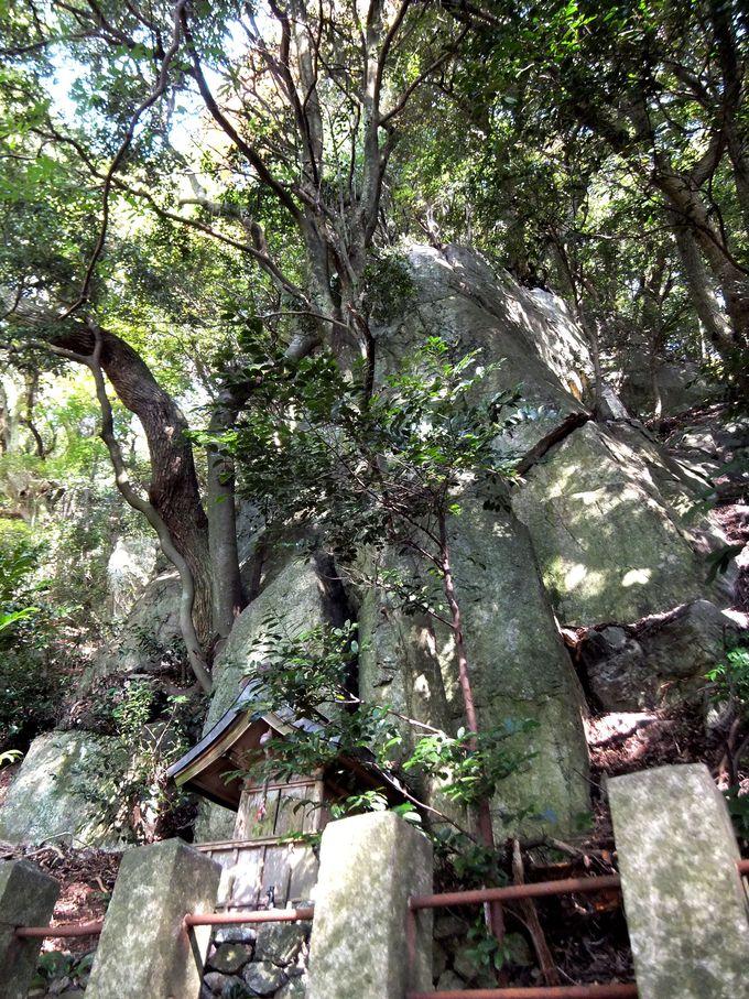 天の岩戸を彷彿とさせる、岩戸神社の磐座は存在感大!