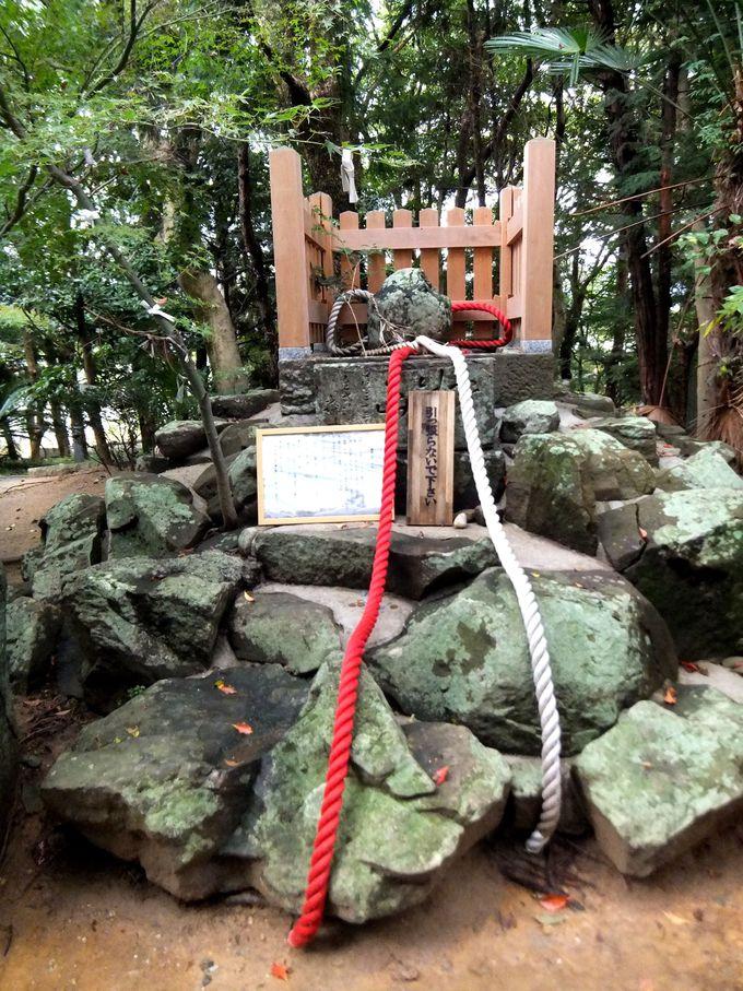 おのころ島神社の縁起のいい鶺鴒石で、お互いの絆を結ぶ!