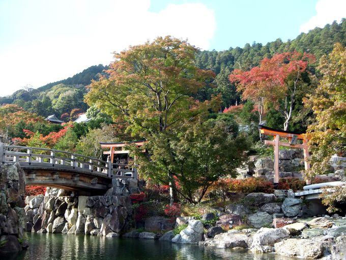 春秋のシーズンは、桜・シャクナゲ・紫陽花・紅葉の名所!