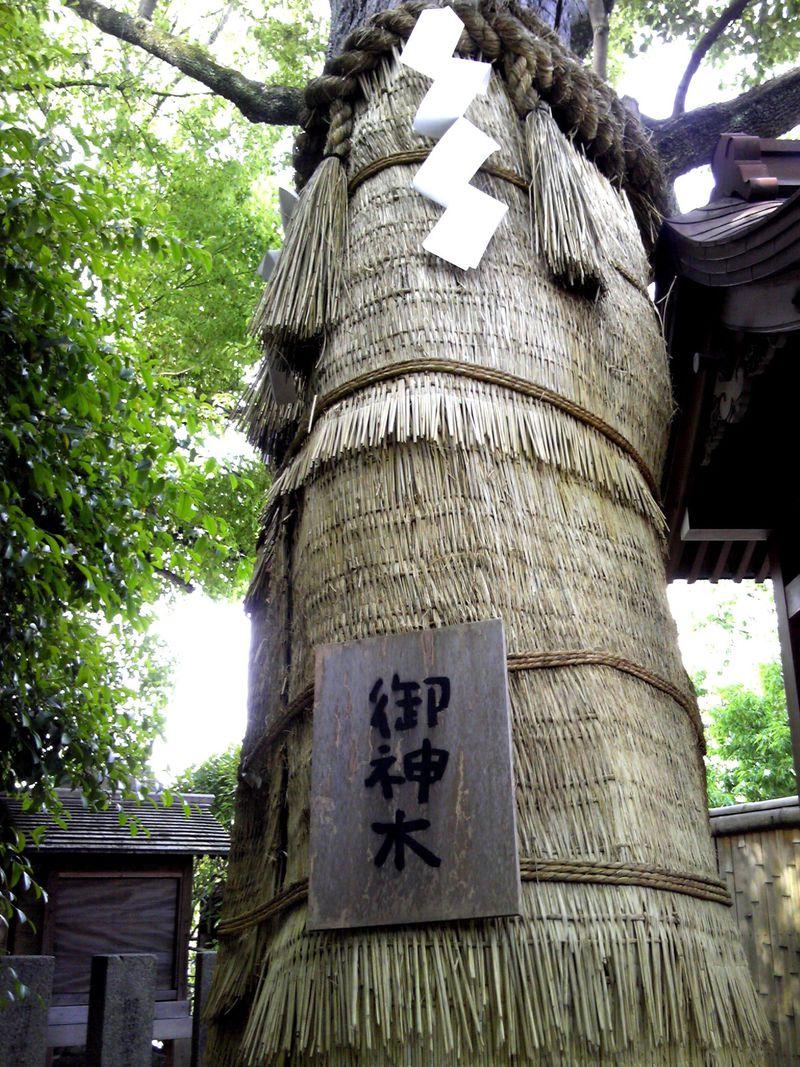 """大阪・堀越神社は""""一生に一度の願い""""を祈る開運パワースポット!"""