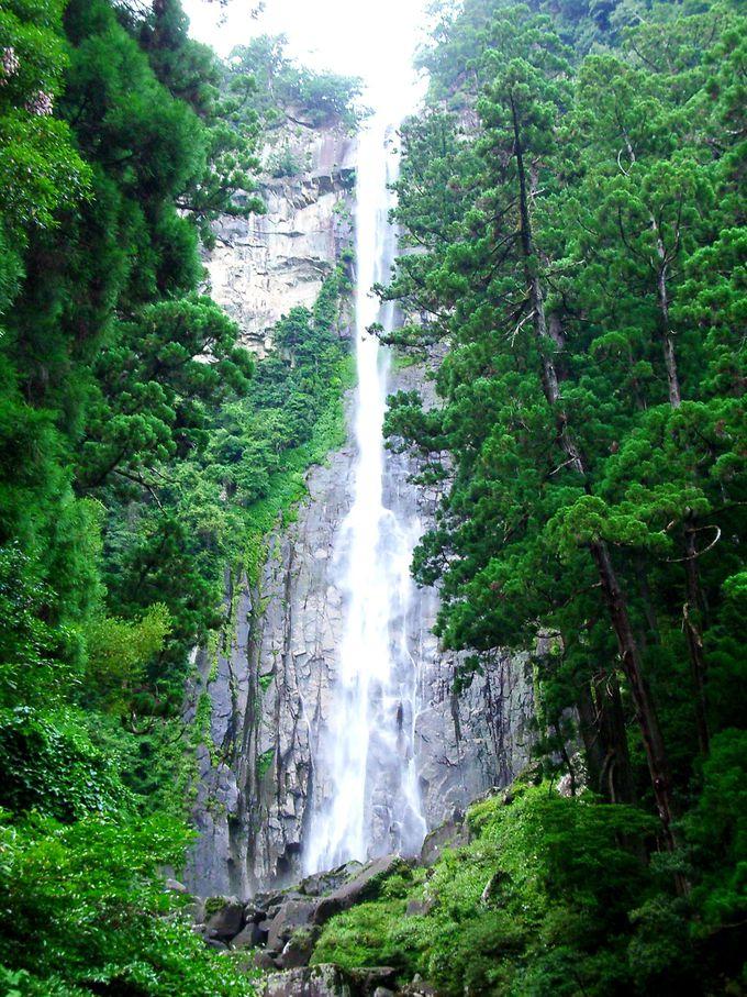 白く光る滝筋が、神々しいまでに美しい!那智の滝