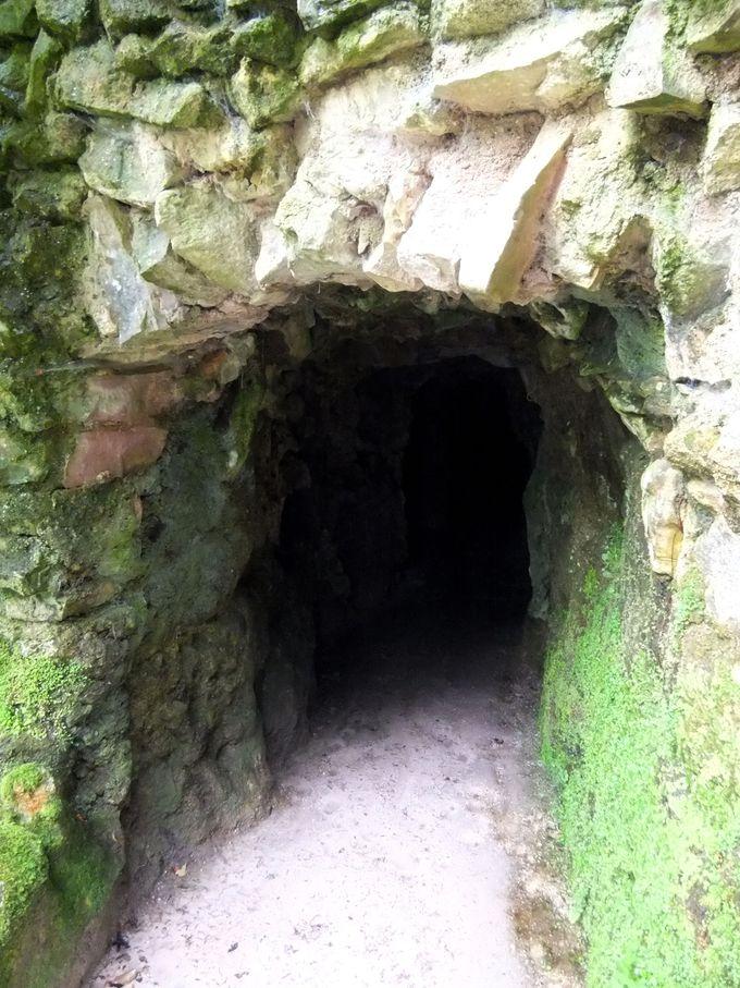 抜け道、秘密の通路、洞窟…入るか入らないかは、あなた次第!