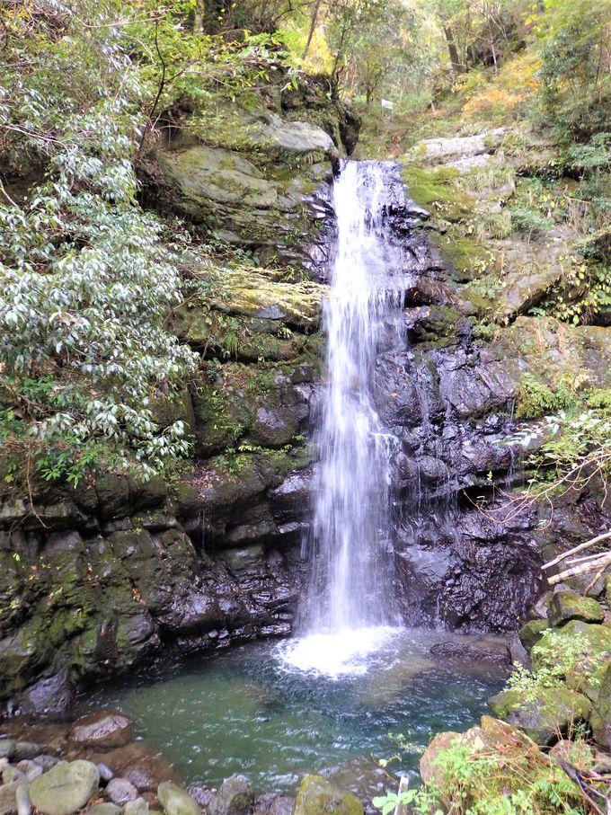 牛滝川沿いの渓流遊歩道から4つの滝を巡る!