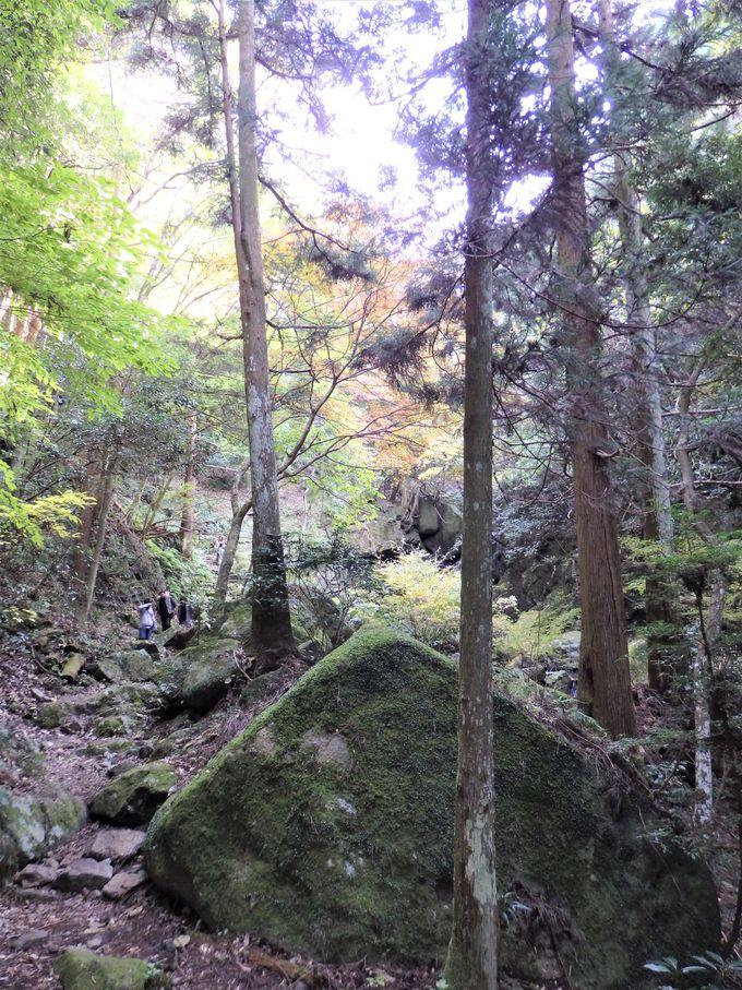 ラストは、幻想的な錦流の滝へ