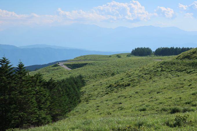 スイスのような場所が日本にも!どこまでも広がる草原