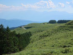 標高1400メートルの高原を走る長野「ビーナスライン」で天空ドライブ