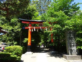 現存する最古の神社建築!「宇治上神社」は京都が誇る世界遺産