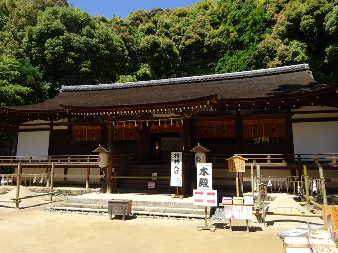 拝殿と日本最古の本殿は国宝指定で必見スポット