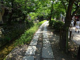 哲学の道ぶらり散策ガイド!京都有数の癒しスポットをお散歩しよう