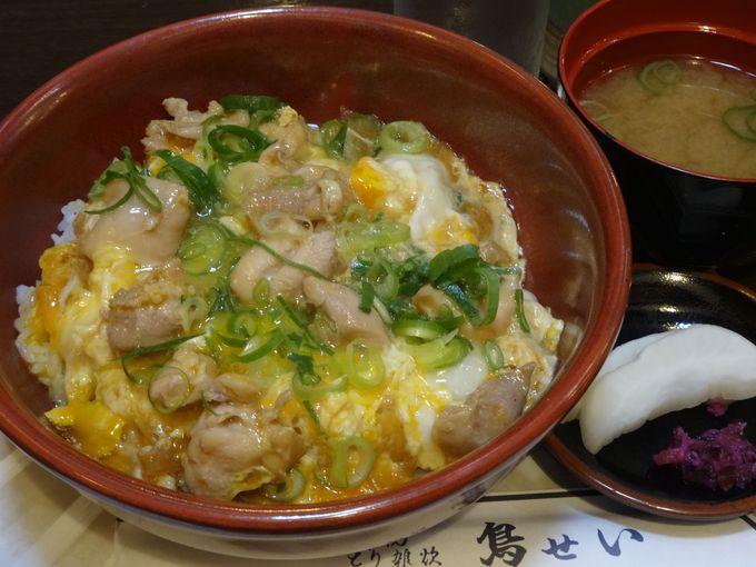 「鳥せい本店」の親子丼はプリプリ食感の鶏肉が最高