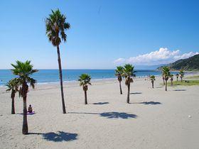 和歌山のビーチや海が楽しめるスポット10選