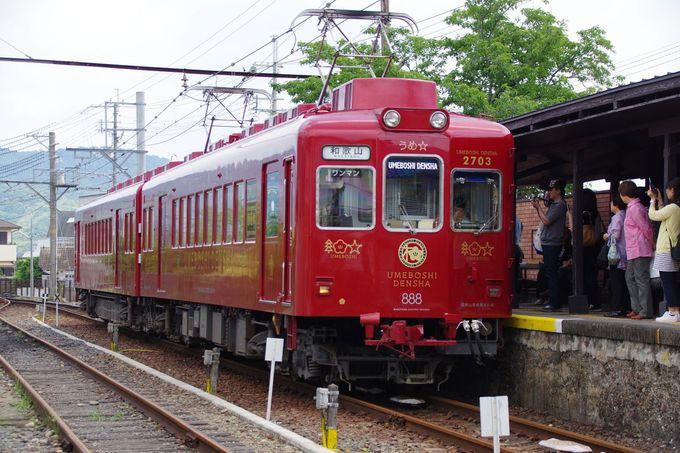 和歌山電鐵の最新リニューアル電車「うめ星電車」