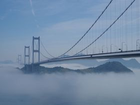 まるで天空の橋!霧に浮かぶ愛媛「来島海峡大橋」がスゴイ
